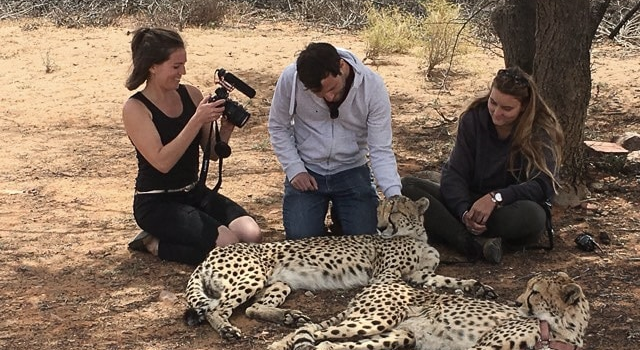 Western Cape Cheetah Interview